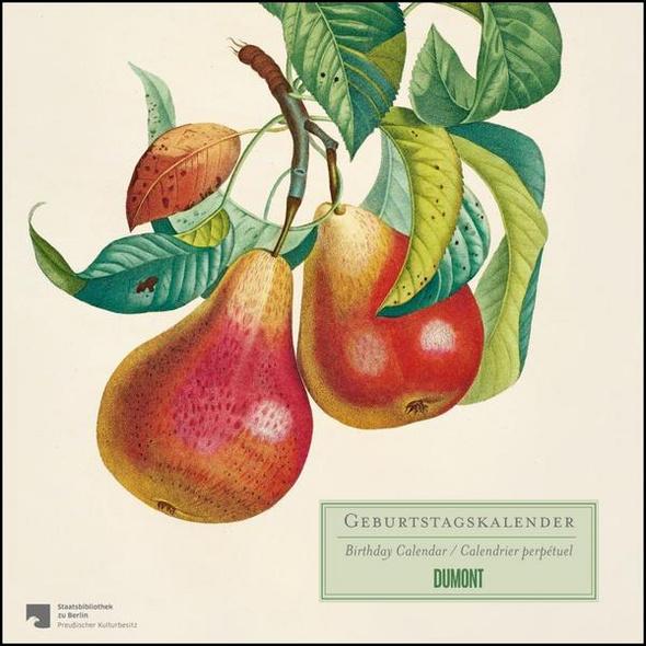 Geburtstagskalender »Alte Obstsorten« – kostbare Buchillustrationen – immerwährend – Premiumpapier – 24 x 24 cm